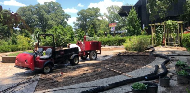 New Herb Garden Update – July:  Full Steam Ahead!