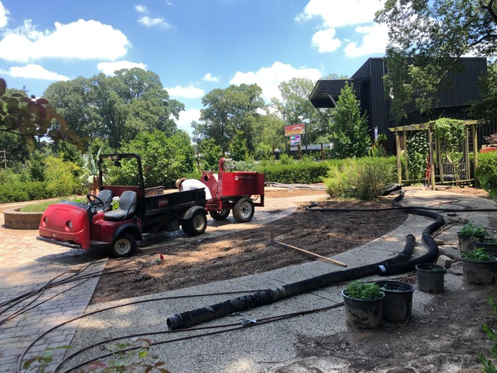 New Herb Garden Update – July:  Full Steam Ahead!