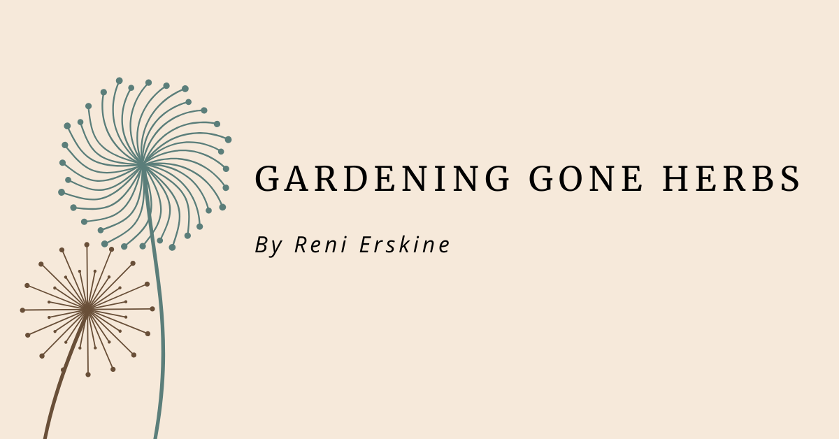 October 2020 – Gardening Gone Herbs