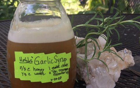 Garlic Honey Syrup – Immune Building, Antibacterial, and Antiviral