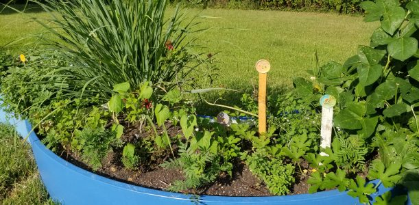 HERB SPIRAL AND ART+GARDEN AT ARKWINGS